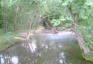 Looking towards the south from the bridge over Beaver Dam Creek